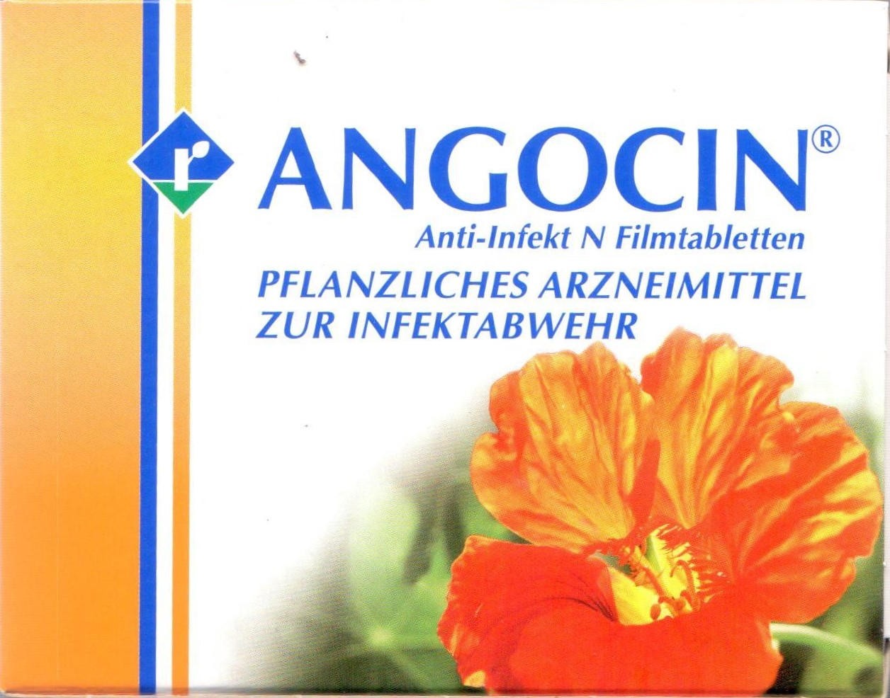 Angocin Anti Infekt N 100 St PZN 06892910 Blase, Sinusitis